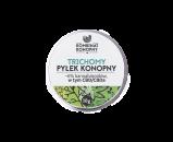 kk-pylek-render-top-2020